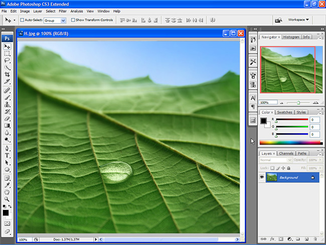 adobe photoshop free  software adobe photoshop cs3