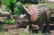 Dinopark v Ostravě 109